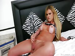 blistering beauteous shemale shows you the brush hot lucubrate increased by jerks wanting