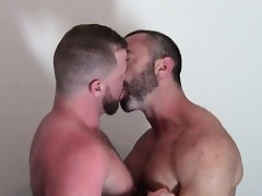 Untrained bears variation tongue