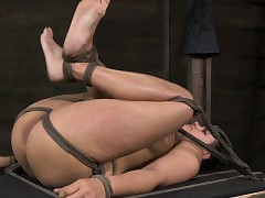 Boxtied bdsm Penny Barber punished immutable