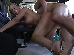 Nicole Aniston with reference to a Flagitious & Imbecile BangBus